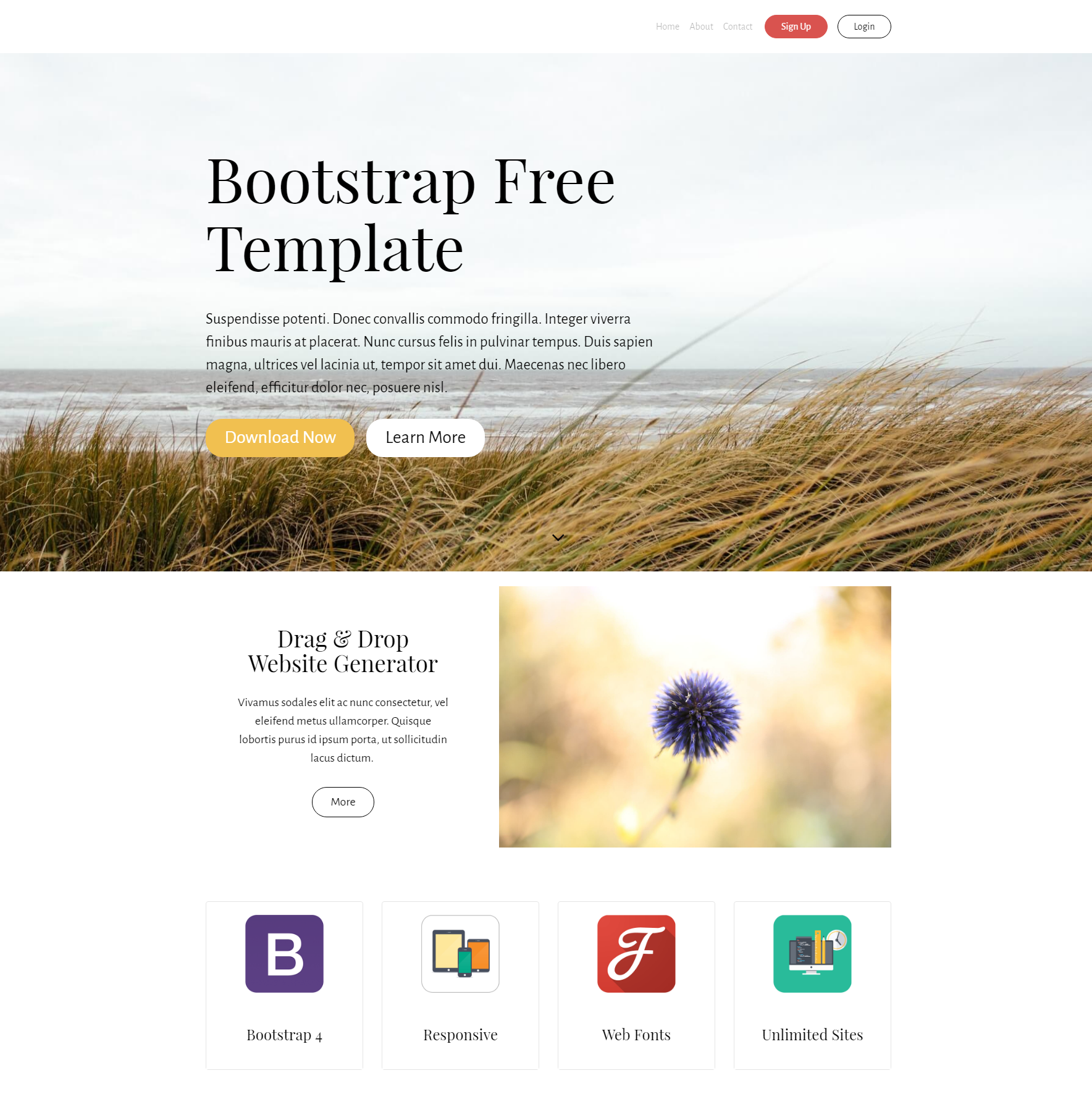 HTML Bootstrap PurityM Templates