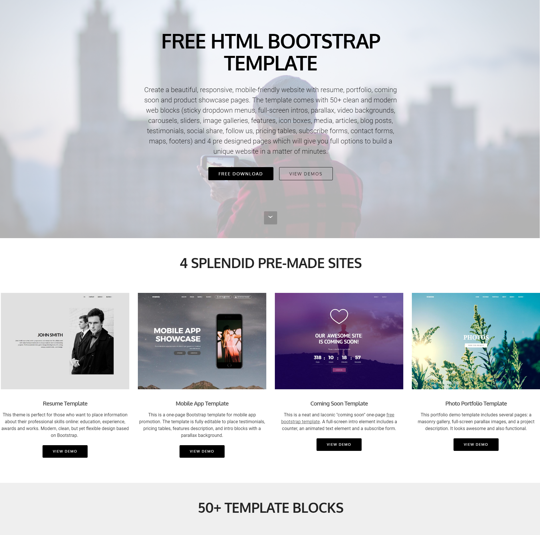 Responsive Bootstrap 4 Blocks Themes